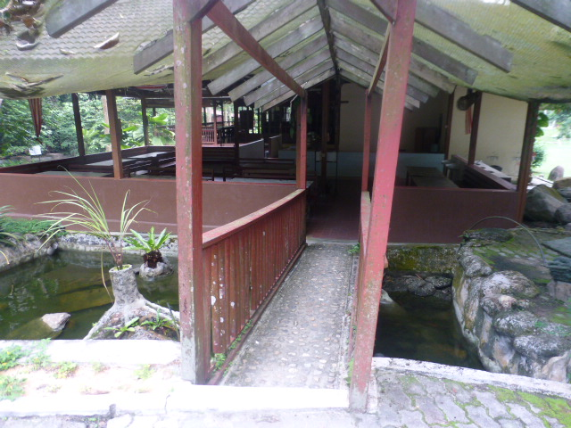 Backyard Jungle Requirements : The Jungle Lodge Alang Sedayu  Venue Directory